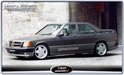 1. CKM Expression kit