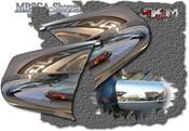 Chrome mirror cover