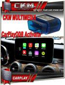 Apple CarPlay OBD activator