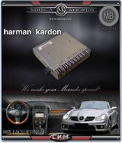 C6. H/K amp multimedia units NTG 2.5.
